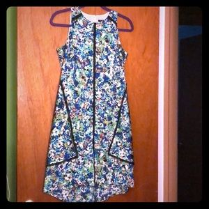 Ann Taylor Loft Dress size 4P